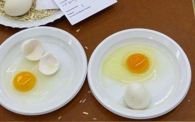 Henk-Jan van de Riet scoort bij eierkeuring